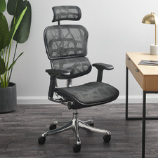 Ergohuman Plus Elite V2 Mesh Office Chair