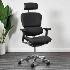 Ergohuman Plus Elite V2 Full Leather Office Chair