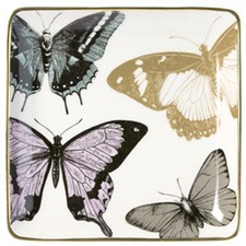 Chimera Butterfly Square Porcelain Plate