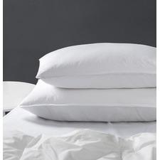 Bren Cotton Standard Pillows (Set of 2)