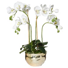 Faux Phalaenopsis & Polished Gold Pot