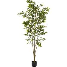 183cm Faux Ficus Tree (Set of 2)
