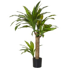 80cm Faux Happy Plant (Set of 2)