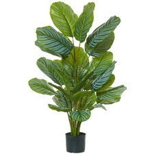 115cm Faux Calathea Plant & Garden Pot (Set of 2)