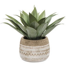 Faux Agave Plants with Lola Pots (Set of 2)