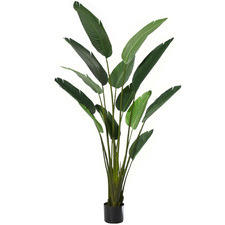 183cm Potted Faux Bird Of Paradise Plant