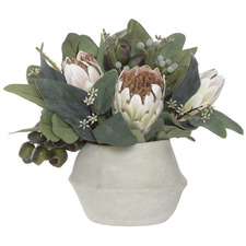 Soft Pink & Cream Potted Faux Mixed Native Protea