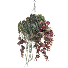 92cm Faux Ferns in Hanging Rattan Bowl