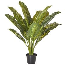 Potted Faux Dieffenbachia Plant