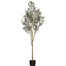 Potted Faux Fruit Bearing Olive Tree