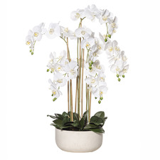90cm Potted Faux Butterfly Orchid Plant