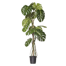 150cm Potted Faux Monstera Plant
