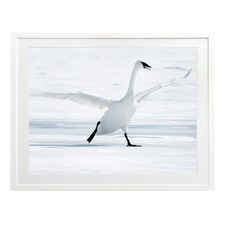 On Thin Ice Framed Wall Art