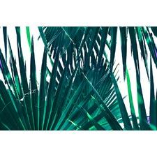 Palm Days Canvas Wall Art