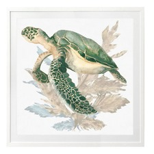 Turtle Love Wall Art