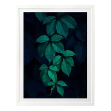 Green Goddess Printed Wall Art