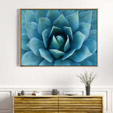 Bloom Of Love Canvas Wall Art