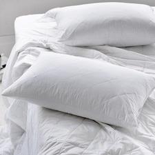Australian Cotton Pillow