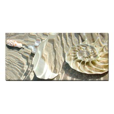 Ripples Nautilus Stretched Canvas