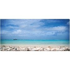 Coral Shore Canvas Wall Art