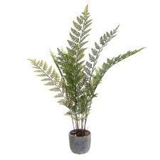 92cm Green Potted Fern
