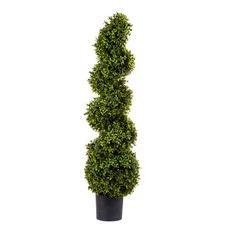 120cm Boxwood Spiral Plant