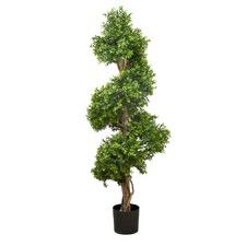 150cm Boxwood Spiral Tree