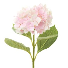 Light Pink Hydrangea Artificial Plant Stems (Set of 12)