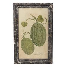 Small Rustic Botanical Fruit Framed Print