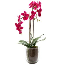 Faux Orchids with Glass Vase