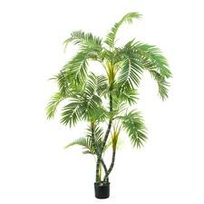 150cm Twisted Trunk Parlour Faux Palm