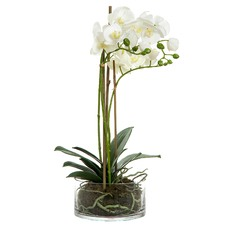 60cm White Faux Orchid with Round Vase
