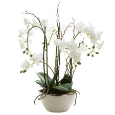 60cm White Real Touch Orchid with Pot