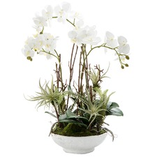 60cm Potted Faux Orchid & Fern