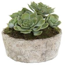 16cm Green Faux Succulent with Ceramic Pot