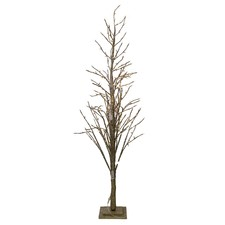 Champagne Mecca Birch Twig Tree