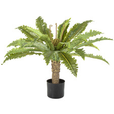 71cm Potted Faux Fern Palm Tree