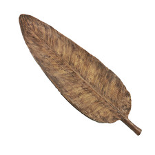 Natural Short Stem Leaf Decorative Tray