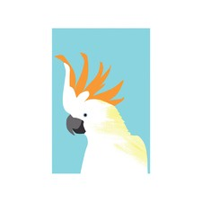 Citron-Crested Cockatoo Modern Printed Wall Art