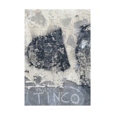 Viva Tinco Modern Printed Wall Art