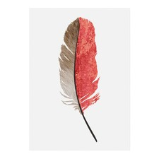 Feather #1 Modern Printed Wall Art