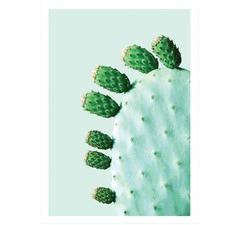 Prickly Pear Cactus 2 Printed Wall Art