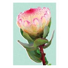 Mint Protea Printed Wall Art