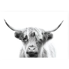 Monochrome Highland Cow Unframed Paper Print