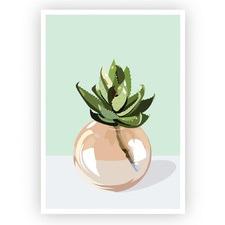 Green Succulent Unframed Paper Print