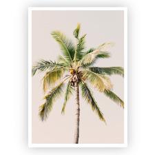 Dreamy Coconut Tree Unframed Paper Print
