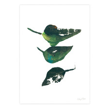 Eucalyptus Leaves II Printed Wall Art