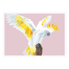 Cockatoo Landing Printed Wall Art