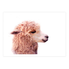 The Llama Printed Wall Art