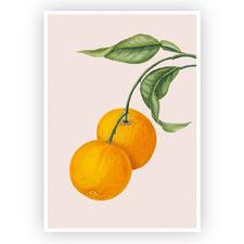 Oranges Printed Wall Art